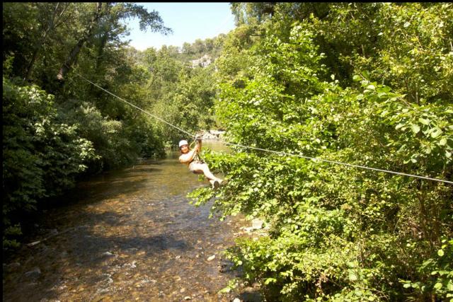 Découvrez l'environnement des Alpes-Maritimes différemment avec le parcours Canyon Forest.